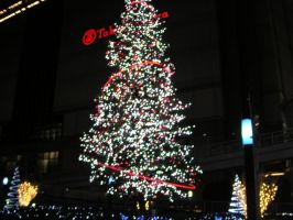 Illumination for Cristmas 1 by JPN-TSUCCHIE
