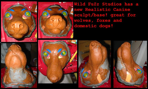 Realistic Canine Resin sculpt by Wild-FuZz-Studios