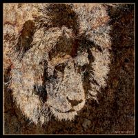 Lion 9 by Globaludodesign