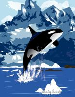 Killer Whale by shady-hearts
