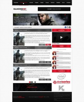 GamingNET web design by Whistas