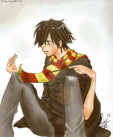 HP: Young James Potter by Ai-hime
