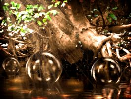 Swamp Bubbles by hallbe