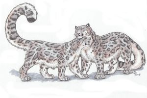 Athari's Snowleopards by ebonytigress
