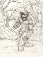 Wolverine hunter's moon by ChrisOzFulton