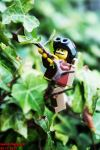 Plant climbing by Lauridsand