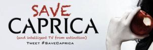 Save Caprica Banner 3 by BSG75