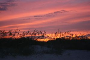 Jacksonville Beach Sunset by ahley