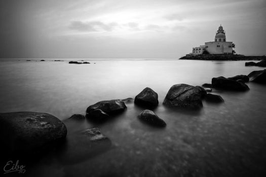In Black and White by Eibography