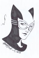 Catwoman Quick Sketch by wrathofkhan