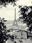La tour Eiffel by DshaLie