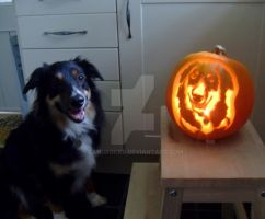 Lennox and his pumpkin twin by sandrocks