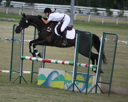 STOCK Showjumping 447 by aussiegal7