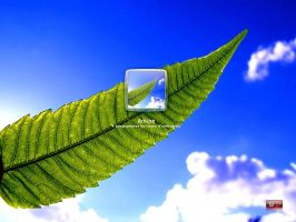 blue plante logon for xp by amine5a5