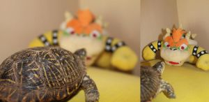 Bowser vs Real turtle by Gattusparrow