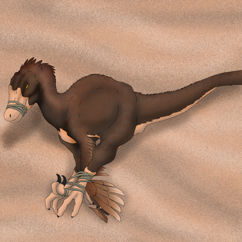 Catching a Feathered Raptor by Raptorroper