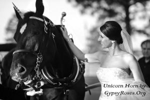 Equine 'Customer' and Bride by che4u