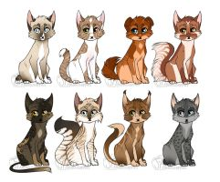 .:Kitten Adoptables:. CLOSED by jealousapples