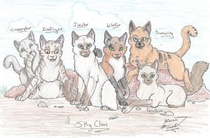 Our SkyClan Cats by Sun-wing