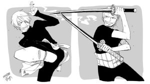OP: Sanji and Zoro by JumpinFREAK