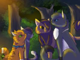 Rusty: I one of Thunderclan-Remaker by danituco