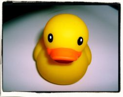 Rubber Duckie by laceface1011