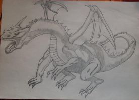 The Dragon by roquana