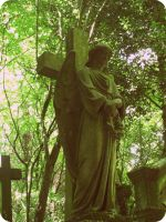 Highgate cemetary 2 by an-neo