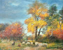 With sheep to pasture by sorinapostolescu