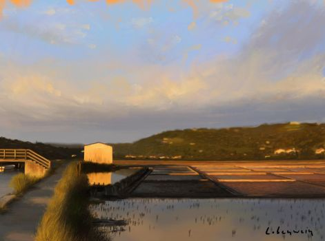 Saltworks - digital painting by RLoben