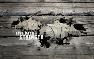 Strength. by alphamin