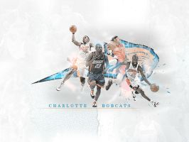 Charlotte Bobcats by metalhdmh