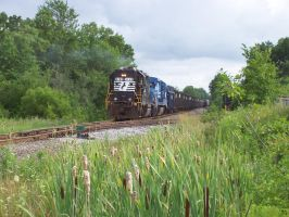 Diesel, Steel, Coal, Cattails. by LDLAWRENCE