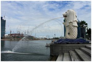 The Merlion by K-Tak