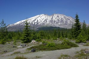 South Slope of Mt. St. Helens by Riverine