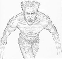 Wolverine - Pencils by allistermac
