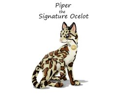 Piper the Signature Ocelot by Pokettkinz