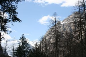Snow, sky and trees by frago86