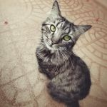 yes? by mohdfikree