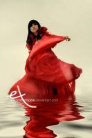 The Red Rose by electroharmonix