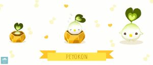 What is a Peyokon? by ethe