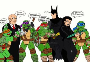 TMNT: Beware The Batman by xero87