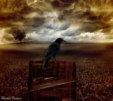 The Raven and the Writing Desk by Filmchild