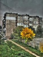 The autumn in my day by techpro