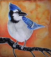 Blue Jay by Forestia