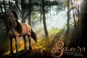 Bowearn - Withering Tales by HorseWhisperer101