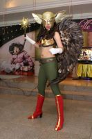 HawkGirl - Brightest Day by izabelcortez