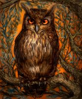 OWL by james-olley