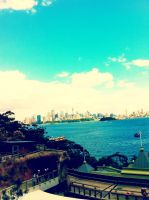 The view from the zoo in Australia by Eyocore