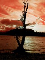 Sunset at Ullswater by Queenselphie